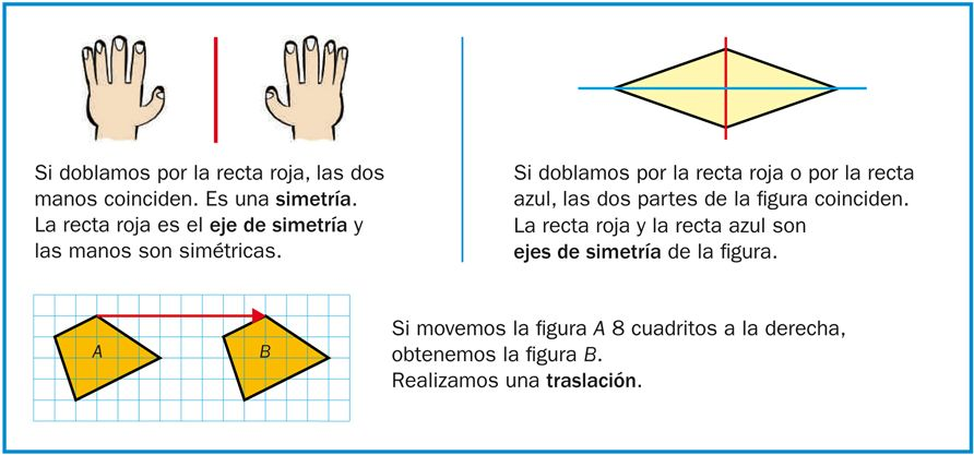 Resultado de imagen de que es la simetria para niños